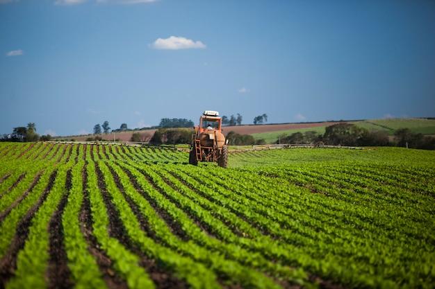 Maschine, die am erdnussfeld unter einem blauen himmel arbeitet. landwirtschaft.