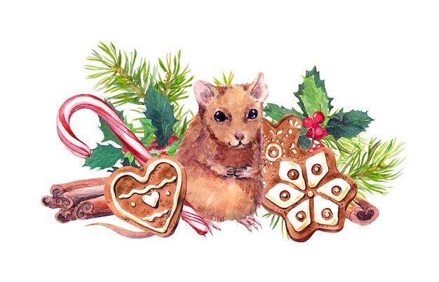 Maus mit gezeichneter illustration des weihnachtssymbol-aquarells hand. nette braune ratte nahe ingwerplätzchen, tannenzweigen und mistelzweigen. aquarell-zimtstangen, zuckerstange mit maskottchen des neuen jahres