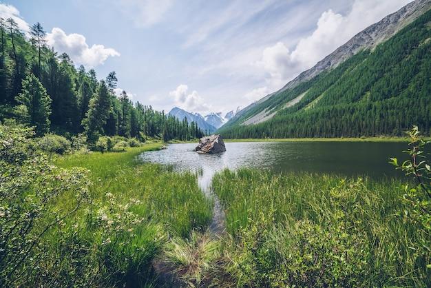 Meditativer blick auf schönen see mit stein im tal auf schneebedeckten bergen. szenische entspannende grüne landschaft