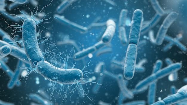 Medizinische darstellung von bakterienzellen