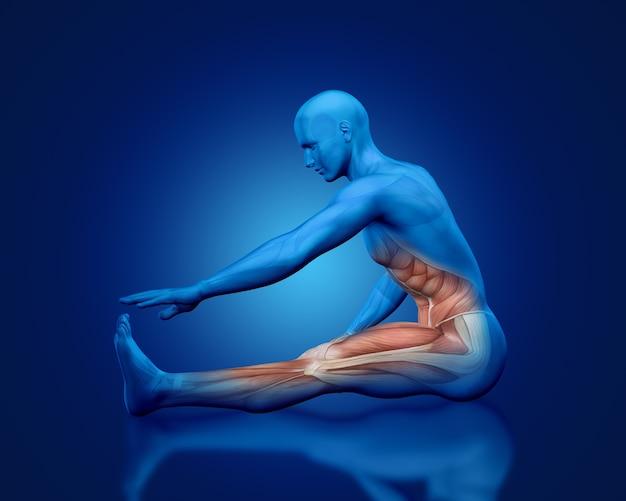 Medizinische figur des blauen 3d-mannes mit teilweiser muskelkarte in dehnungshaltung