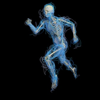 Medizinische männliche 3d-figur aus leuchtenden splines