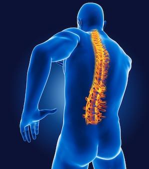 Medizinischer 3d-mann mit skelett