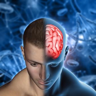 Medizinischer hintergrund 3d mit männlicher abbildung mit dem gehirn hervorgehoben