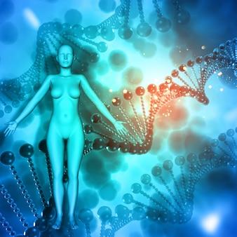 Medizinischer hintergrund 3d mit weiblicher abbildung auf dna-strängen