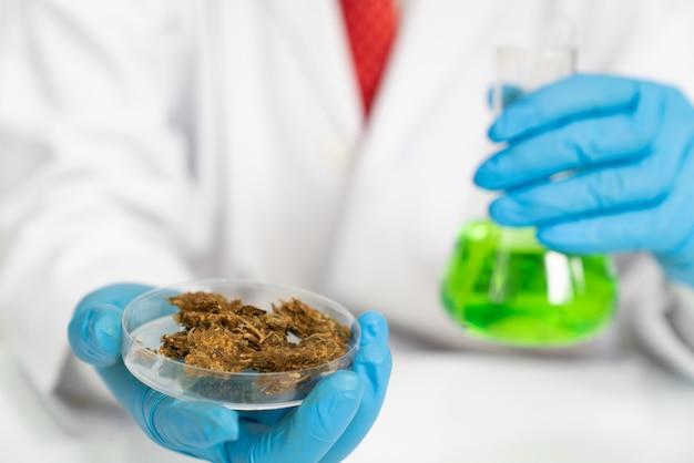 Medizinisches konzept des marihuanasymbols
