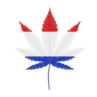 Medizinisches marihuana oder cannabis hanfblatt mit flaggenfarben des königreichs der niederlande auf weißem hintergrund. 3d-rendering