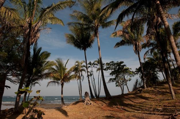 Meerblick in san jose costa rica