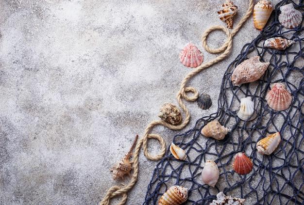 Meeresartikel: muscheln, seil, netz. nautischer hintergrund. platz für text