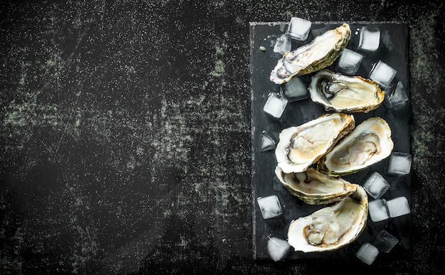 Meeresfrüchte. geöffnete rohe austern auf einem steinbrett mit eiswürfeln. auf dunklem rustikalem tisch
