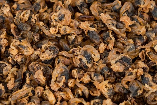 Meeresfrüchte getrocknete muscheln auf hintergrund