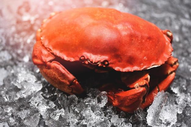 Meeresfrüchte-schalentiere gedämpfte rote krabben oder gekochte steinkrabben, frische krabben auf eis