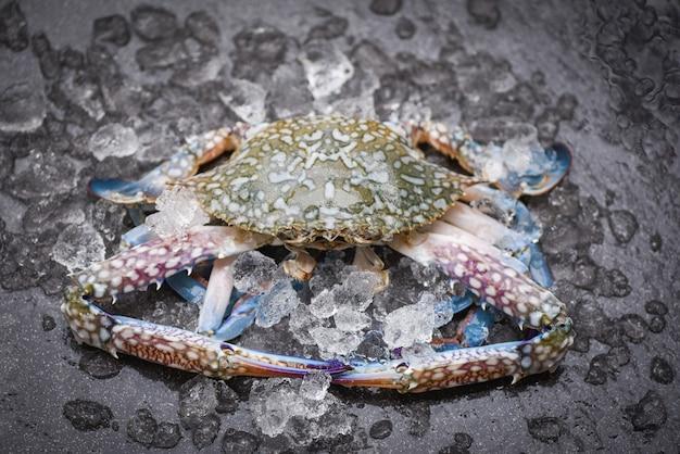 Meeresfrüchtekrabben auf eis