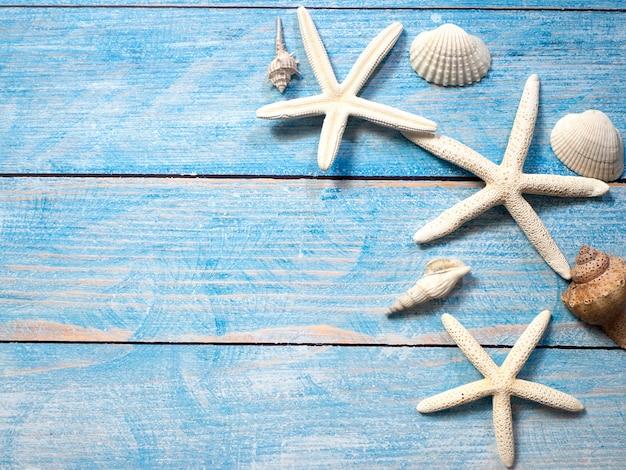 Meeresgegenstände, muscheln und seesterne auf holz