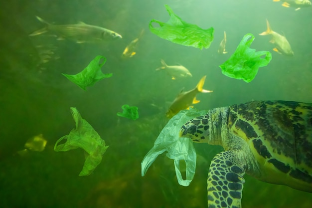 Meeresschildkröte essen plastiktüte ozeanverschmutzungskonzept