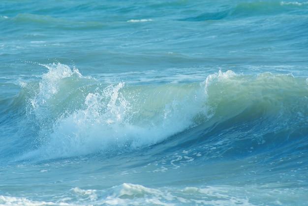 Meereswelle