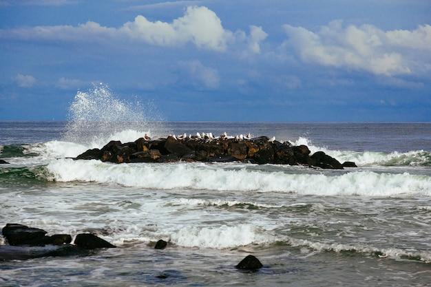 Meereswellen, die auf den felsen, meerblick brechen