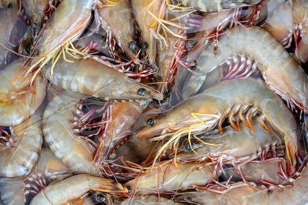 Meerfrische garnelen am straßenmarkt in thailand. meeresfrüchte-konzept. rohe garnelen zum kochen, nahaufnahme