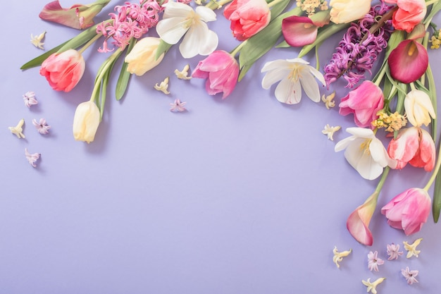 Mehrfarbige frühlingsblumen auf lila hintergrund