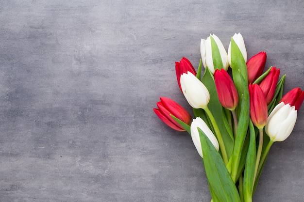 Mehrfarbige frühlingsblumen, tulpe auf grauem hintergrund.