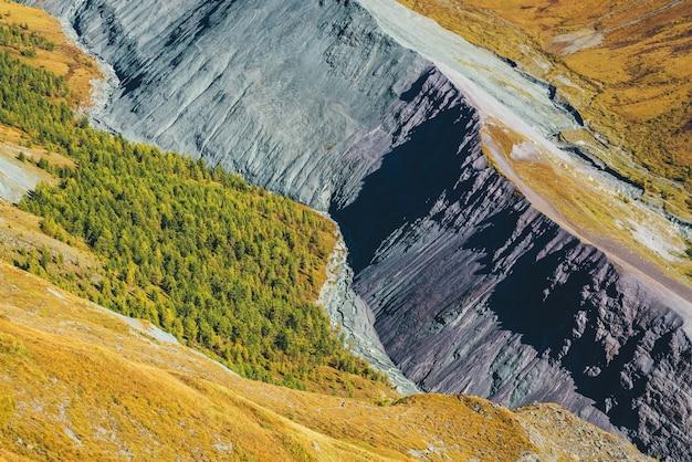 Mehrfarbige herbstlandschaft mit grauem bergrücken in drachenschwanzform mit oranger und lila tönung im tal mit wald bei sonnenschein. erstaunliche bunte berglandschaft mit rockies in herbstfarben.
