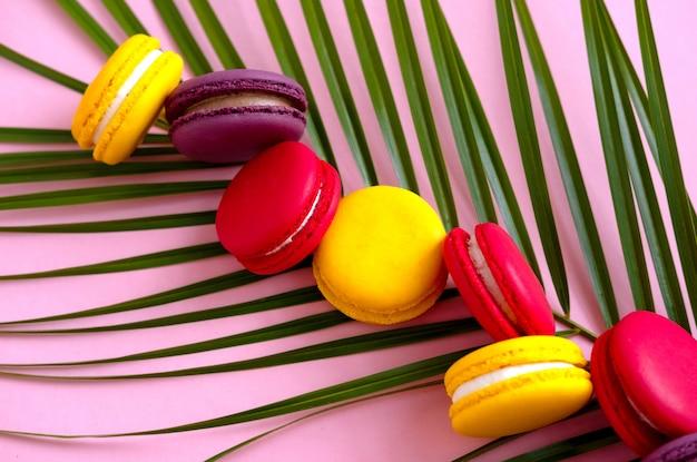 Mehrfarbige makkaronikekse ausgebreitet auf einer palmblattnahaufnahme. feiertagsgebäck, süße gebäckplätzchen.