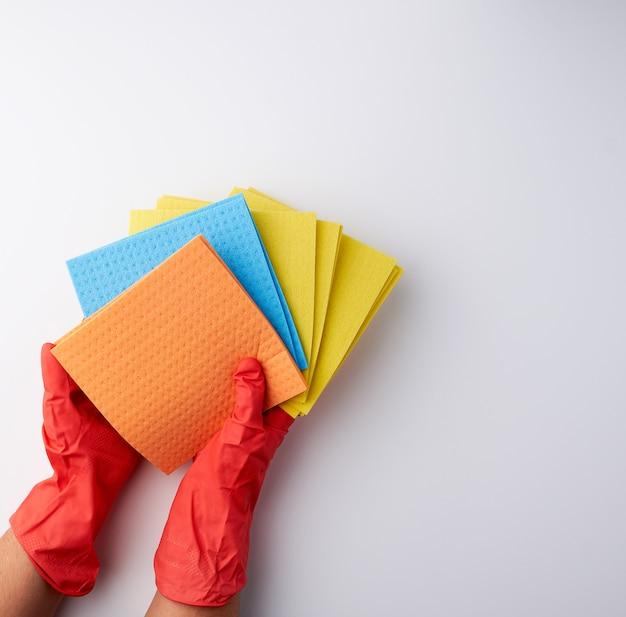 Mehrfarbige quadratische saugfähige schwämme in ihren händen, die rote gummihandschuhe tragen