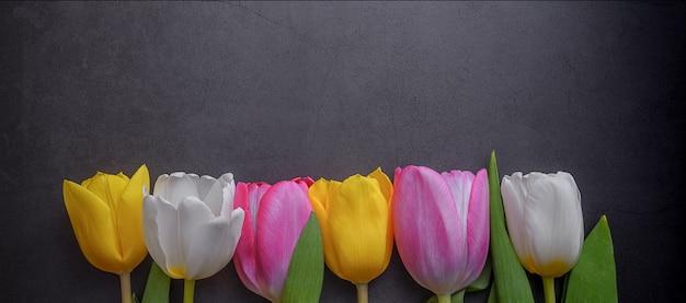 Mehrfarbige tulpen in einer reihe gegen eine dunkelgraue stuckwand.