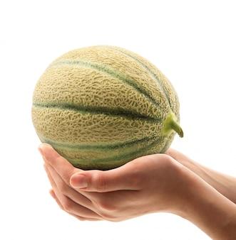 Melone in den händen