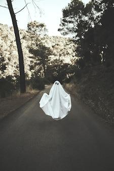 Mensch im Geisteranzug, der auf Landschaftsweg frei schwebt