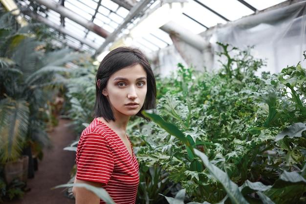 Menschen-, botanik-, landwirtschafts-, gartenbau- und gartenkonzept. beschnittener schuss der schönen jungen landwirtin, die lässiges kleid trägt, das in der baumschule arbeitet und für exotische pflanzen und blumen sorgt