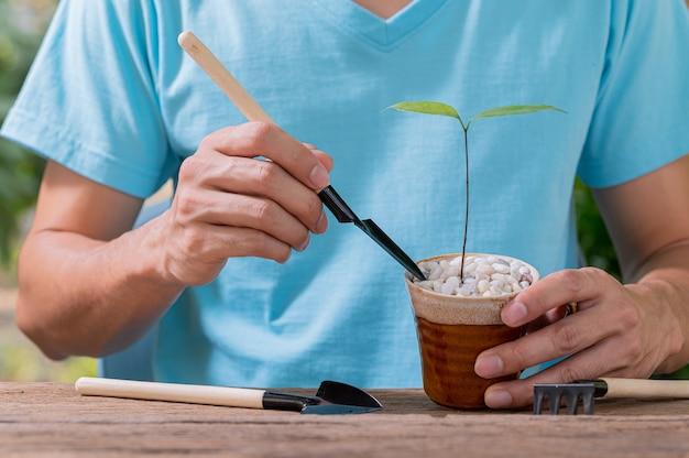 Menschen, die bäume im topfkonzept der liebespflanzen pflanzen, lieben umwelt