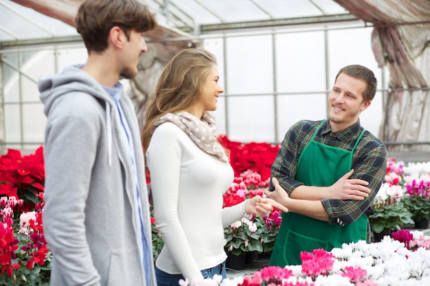 Menschen, die in einer gärtnerei arbeiten