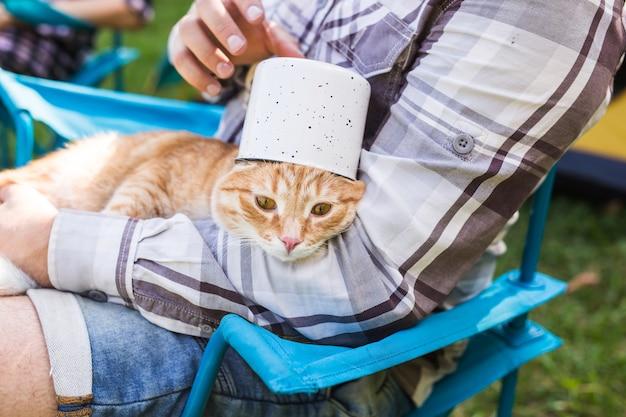 Menschen, tourismus und naturkonzept - mann, der lustige katze auf natur hält