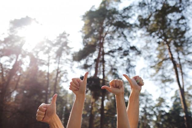 Menschliche hände, die daumen oben auf natürlichem hintergrund zeigen. männliche und weibliche hände zeigen im park gute zeichen.