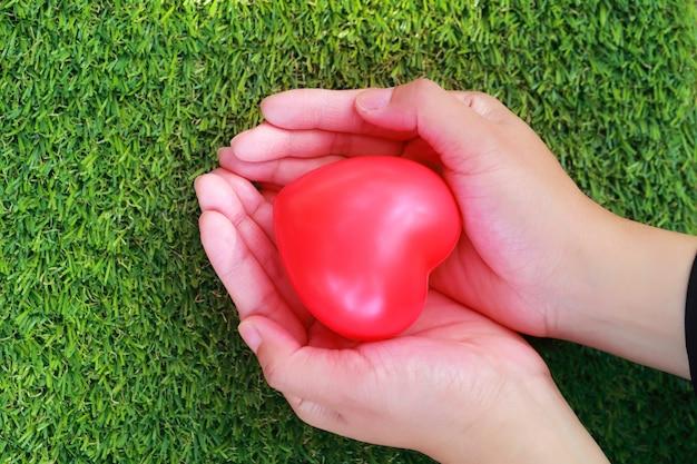 Menschliche hände, die rotes herz auf grünem glas halten