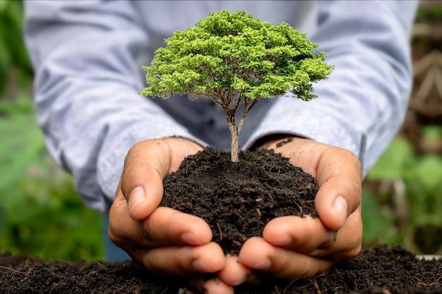 Menschliche hände, die setzlinge oder bäume im boden pflanzen tag der erde und kampagne zur globalen erwärmung.