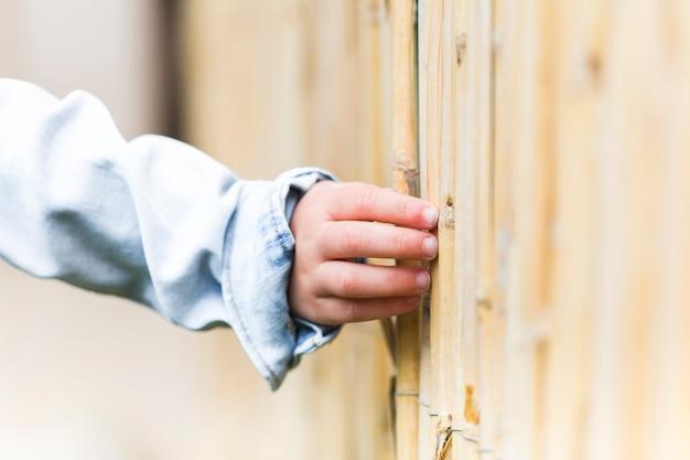 Menschliche hand, die bambuszaun berührt