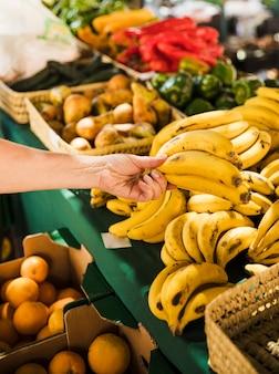 Menschliche hand, die bündel der organischen frischen banane im gemischtwarenladen hält