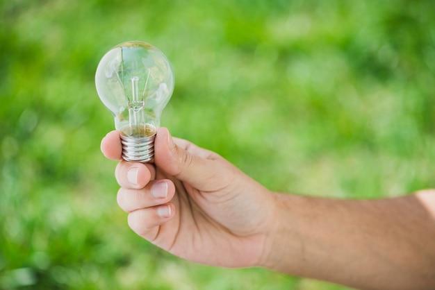 Menschliche hand, die transparente glühlampe gegen grünen hintergrund hält