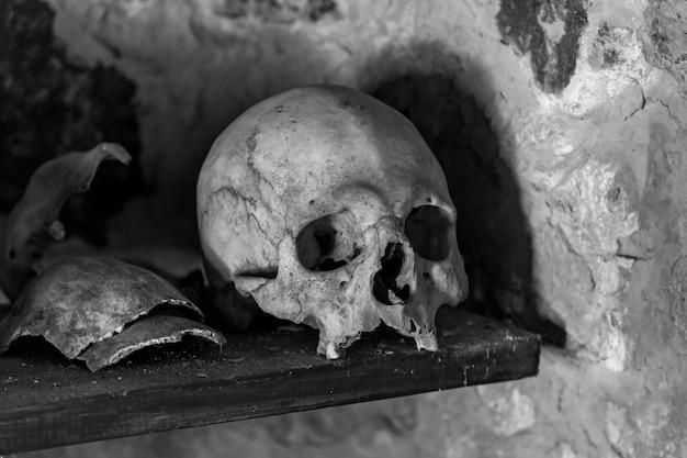 Menschliche schädel auf einem holzregal in einer steinernen krypta