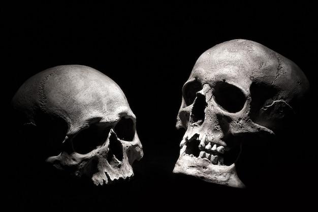 Menschliche schädel auf einem schwarzen hintergrund