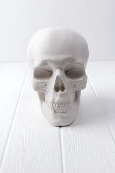 Menschlicher gipsschädel am weißen holztisch.