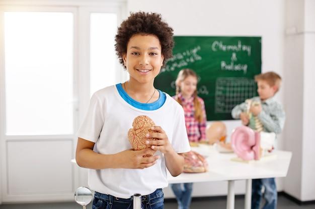 Menschlicher körper. fröhlicher positiver junge, der ein menschliches gehirnmodell hält, während er an biologie interessiert ist