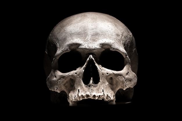 Menschlicher schädel auf schwarz