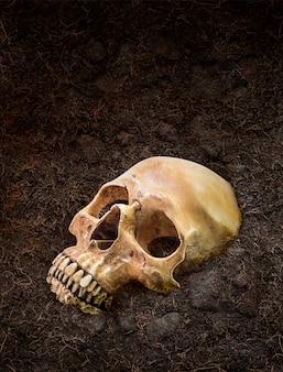 Menschlicher schädel begraben unter der erde