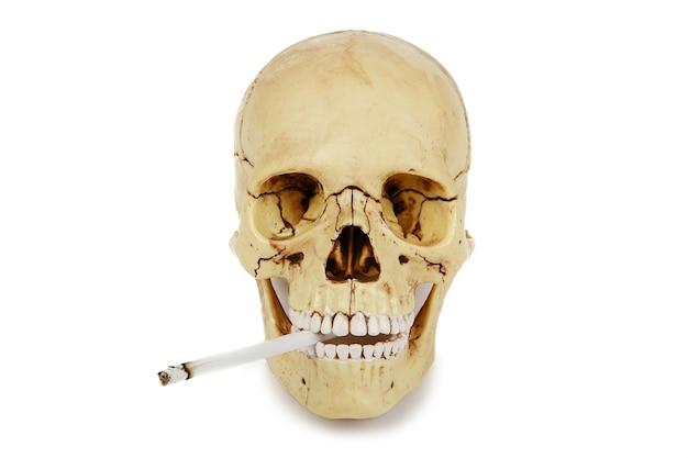 Menschlicher schädel, der eine zigarette lokalisiert auf einem weißen hintergrund raucht