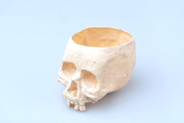 Menschlicher schädel für halloween verwenden