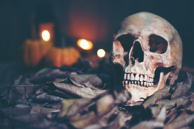 Menschlicher schädel, halloween-konzept, weinlesefilterbild