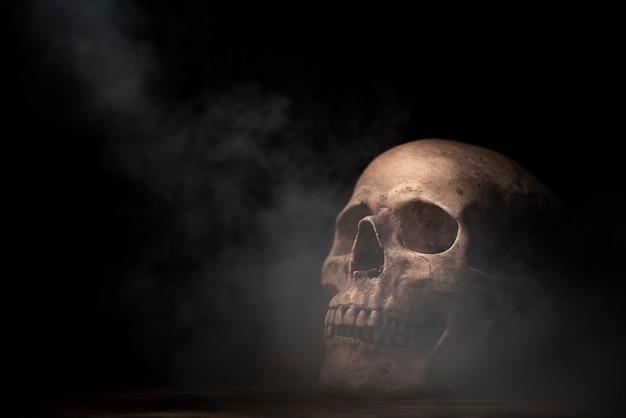 Menschlicher schädel in halloween-konzept
